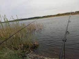 Платная рыбалка в Беларуси