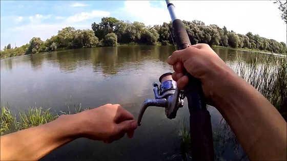 Рыбалка летом на Дону