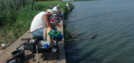 Рыбалка в ПМР