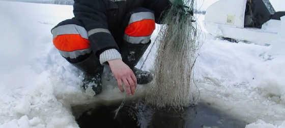 Зимняя рыбалка на сети в Сибири в жуткий мороз
