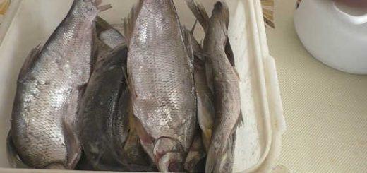Вяленая рыба: как правильно засолить, сколько вымачивать солёную рыб