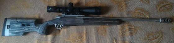 ORSIS Varmint 308