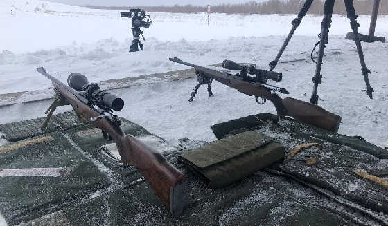 БИТВА ЛОСЕЙ 308 win
