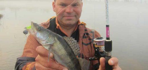 Рыбалка на ОКУНЯ и СУДАКА