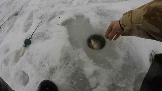 Рыбалка на ЧУПА ЧУПС