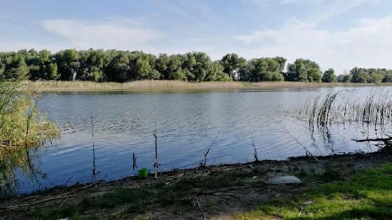 Рыбалка на удочку САМОЛОВКУ