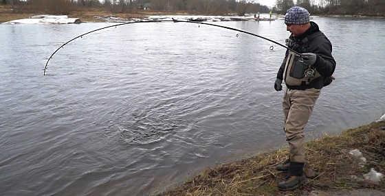 Рыбалка на ОГРОМНЫХ РЫБ с берега на спиннинг