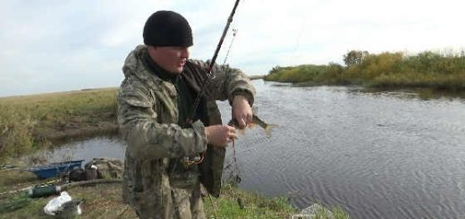 Первая рыбалка по жидкой воде