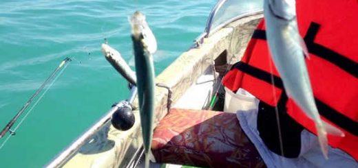 Ловля селедки с лодки