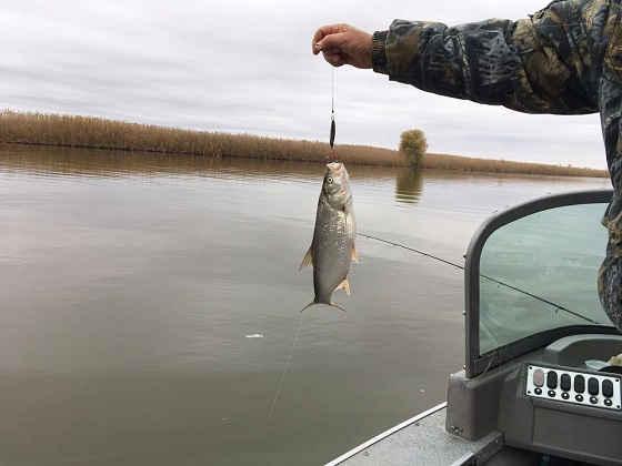 Весенний выезд на Рыбалку