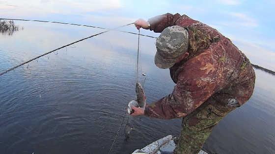 Вылов рыбы сетями