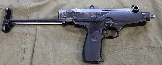 АЕК-919 Каштан