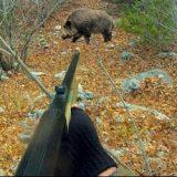 Охота с нарезным оружием
