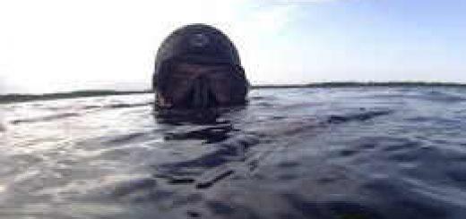 Как Подводные охотники борются с браконьерством