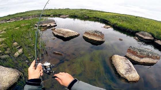 Дикая рыбалка на севере