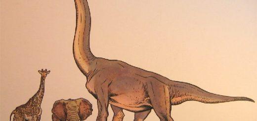 Насколько высокие были динозавры?