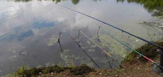 Тест амортизатора для рыбалки