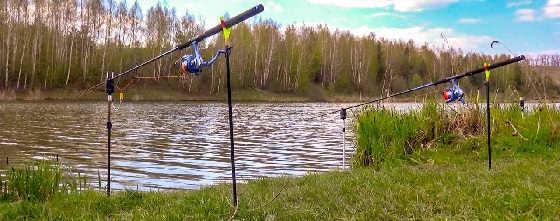 Зачетные караси на лесном озере