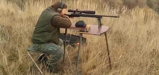 Remington 700 308 win на 400 метров