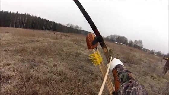 Охота с лука на фазанов