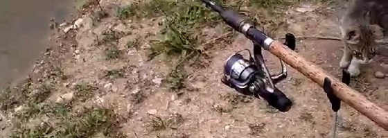 Рыбалка и обзор на фидер Волжанка Оптима