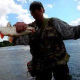 Летняя рыбалка на Оке