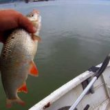 Рыбалка на Оби с Отводным поводком