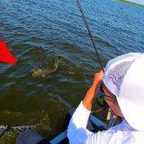 Особенности национальной рыбалки по хищнику