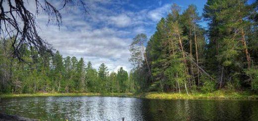 Русская рыбалка в глухой тайге