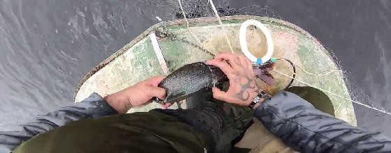 Рыбалка на Любимой Реке