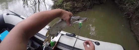 Рыбалка со спиннингом на протоке