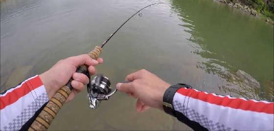 Рыбалку на тилапию