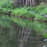 Рыбалка на ТАЕЖНОЙ реке