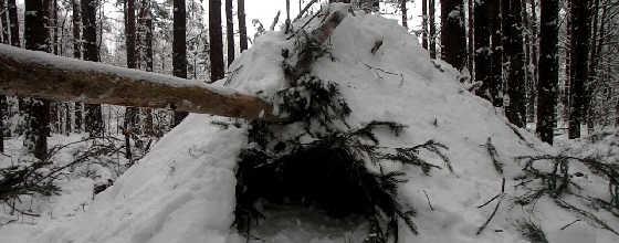 Снежное укрытие