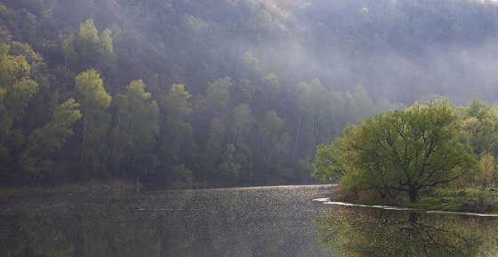 Утро на красивой реке