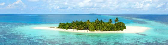 Выживание на необитаемом острове