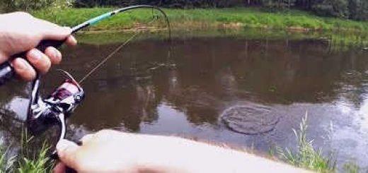 ВОБЛЕР-ДЕРЕВЯШКА делает рыбалку