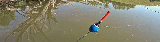 Рыбалка на утренней зорьке на поплавок
