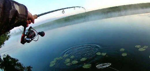 Летняя рыбалка на фидер в июле 2019