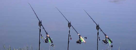Как правильно ставить фидер на рыбалке