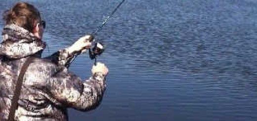 Рыбалка в гомельском парке