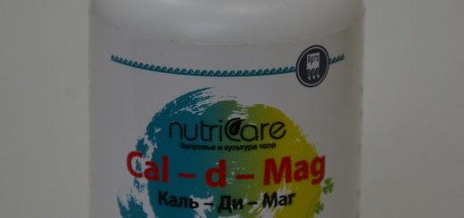Каль-ди-Маг