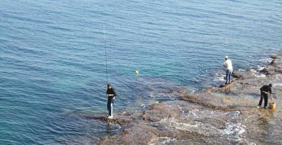Морская рыбалка в Крыму - ловля ставриды