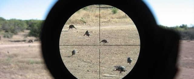 Установка, проверка и пристрелка оптического прицела