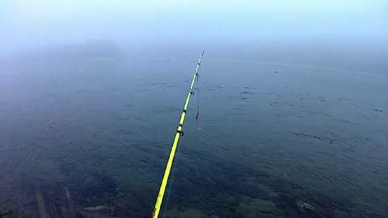 Рыбалка на утренней зорьке на спиннинг
