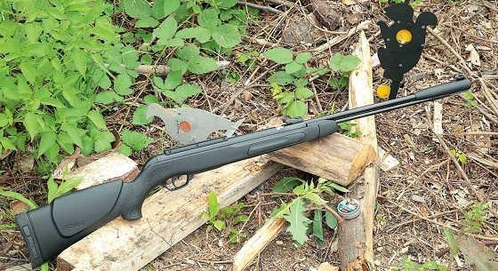 Пневматические винтовки GAMO