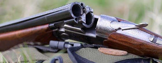 Как в Украине купить еще одно ружье