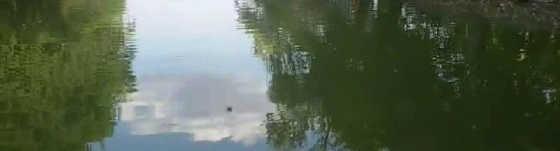 Рыбалка в Железноводске