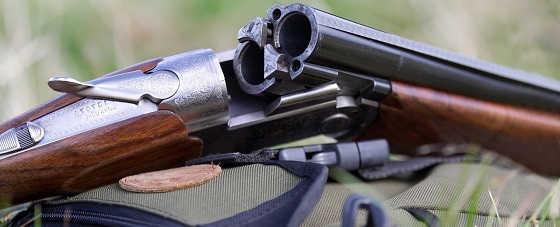 Как правильно купить охотничье оружие