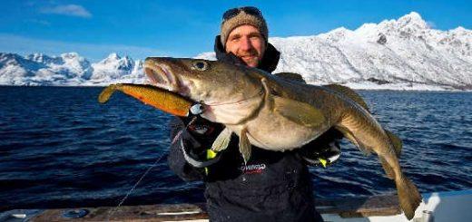 Морская рыбалка в Норвегии